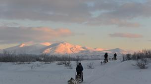 Dog sledding-Abisko-Drive Your Own Dogsled in the Arctic Circle-5