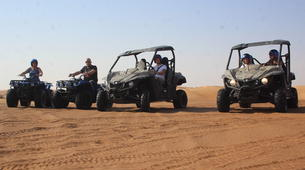 Quad biking-Dubai-Sunset Dune Buggy Excursion in the Red Desert-5