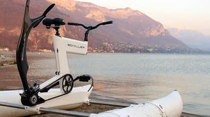 Kayaking-Simon's Town-Water Biking Tour from Simon's Town-3
