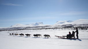 Dog sledding-Abisko-Dog Sledding Adventure in the Arctic Circle-3