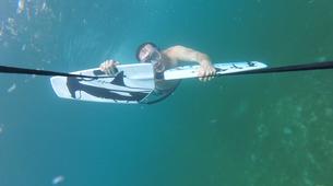 Snorkeling-Les Anses-d'Arlet-Excursion Seabob aux Anses-d'Arlet, Martinique-3