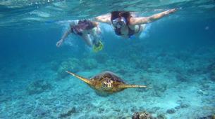 Esnórquel-Islas Eolias-Snorkeling Tours in Aeolian Islands, Sicily-2