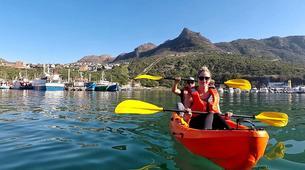 Sea Kayaking-Cape Town-Guided Sea Kayaking Tour in Hout Bay-5