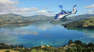 Helicopter tours-Christchurch-Whale Watching Helicopter Tour in Kaikoura-2
