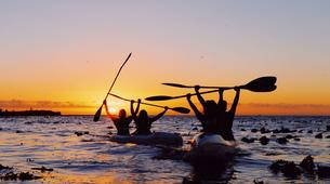 Kayaking-Cape Town-Kayaking Tour along Atlantic Seaboard Coastline-6