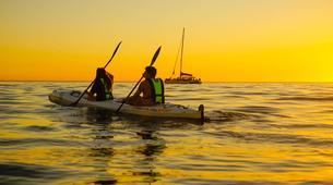 Kayaking-Cape Town-Kayaking Tour along Atlantic Seaboard Coastline-3