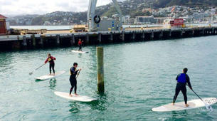 Stand up Paddle-Auckland-SUP Lesson from Orakei Marina in Auckland-3