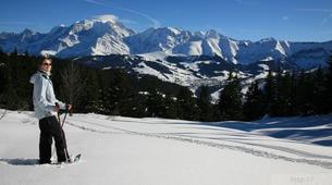 Raquette à Neige-Val d'Arly-Randonnée Raquettes à Praz-sur-Arly, Haute-Savoie-1