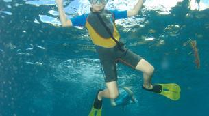 Snorkeling-Les Trois-Îlets-Excursion Snorkeling aux Trois-Îlets, Martinique-4