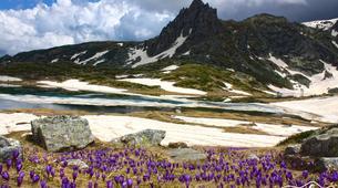 Senderismo-Rila-Hiking Excursion in Rila Mountains & 7 Rila Lakes near Sofia-3