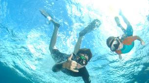 Snorkeling-Les Trois-Îlets-Excursion Snorkeling aux Trois-Îlets, Martinique-2