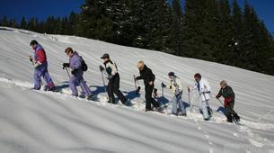 Randonnée / Trekking-Chamonix Mont-Blanc-Randonnée Photographie dans la vallée de Chamonix, Mont Blanc-2