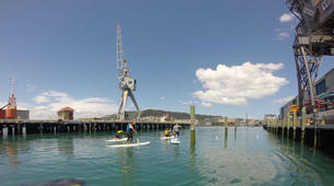Stand up Paddle-Auckland-SUP Lesson from Orakei Marina in Auckland-2
