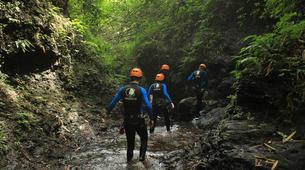 Canyoning-Gitgit-Canyoning Excursion at Tukad Anakan Gorge in Bali-2