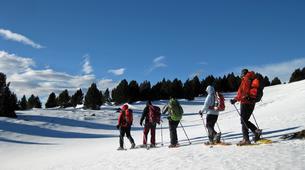 Raquette à Neige-Andorre-Excursion en raquettes près de Canillo, Andorre-1