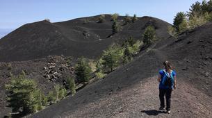 4x4-Mount Etna-Jeep Tour on Mount Etna, Sicily-5