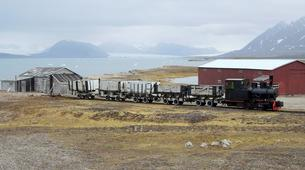 Wildlife Experiences-Svalbard-Boat Tour to Ny-Ålesund, the Northernmost City in the World-1