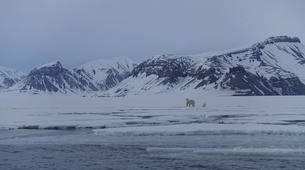 Wildlife Experiences-Svalbard-Nature and Wildlife Boat Tour in Svalbard, Norway-1