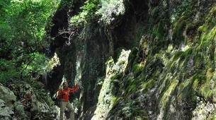Hiking / Trekking-Amalfi Coast-Trekking in the Valle delle Ferriere from Scala, Amalfi Coast-3