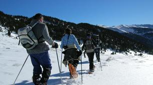 Raquette à Neige-Andorre-Excursion en raquettes près de Canillo, Andorre-5