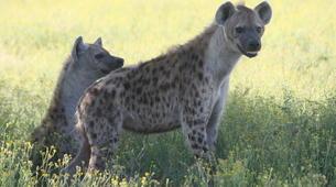 Safari-Windhoek-3 Day Safari in Etosha National Park-2