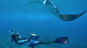 Snorkeling-Nusa Penida-Snorkelling Excursion in Nusa Penida from Nusa Lembongan-1
