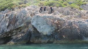 Coasteering-Kas-Coasteering in Kas, Turkey-11