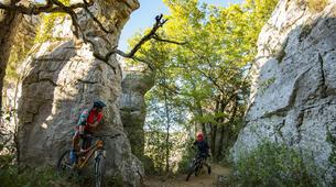VTT-Ardèche-Randonnée VTT dans les Bois de Païolive, Ardèche-1