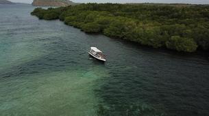 Snorkeling-Nusa Penida-Snorkelling Excursion in Nusa Penida from Nusa Lembongan-3