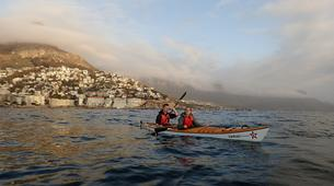 Sea Kayaking-Cape Town-Kayaking excursion in Table Bay, South Africa-4