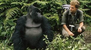 Randonnée / Trekking-Volcanoes National Park-Gorilla Trekking in Volcanoes National Park-2