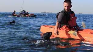 Seekajak-Walvis Bay-Sea Kayaking excursion in Walvis Bay, Namibia-1