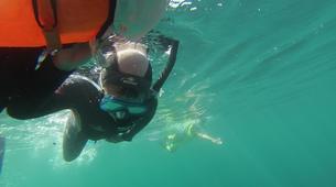Snorkeling-Marseille-Randonnée Palmée autour de l'île d'Endoume, Marseille-6