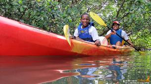 Canoë-kayak-Morne-à-l'Eau-Excursion Kayak de mer en Guadeloupe-1
