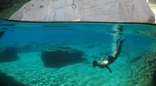 Voile-Milos-Semi-Private Sailing Tour in Milos, with Highlights to Kleftiko and Sykia Cave-5