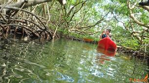 Canoë-kayak-Morne-à-l'Eau-Excursion Kayak de mer en Guadeloupe-2