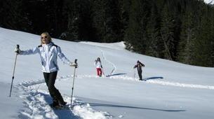 Raquette à Neige-Megève, Evasion Mont Blanc-Excursion en raquettes, Megève, massif du Mont-Blanc-6