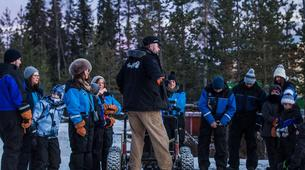 Dog sledding-Rovaniemi-Husky cart excursion from Rovaniemi-3