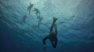 Snorkeling-Baie de Saint-Leu-Excursions snorkeling sur les Récifs de l'île de La Réunion-1