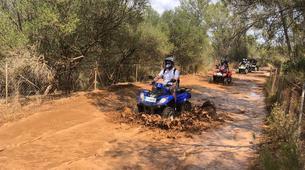 Quad-Mallorque-Randonnée en Quad à El Arenal près de Palma-1