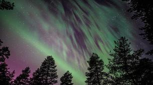 Snow Experiences-Rovaniemi-Experience the Northern Lights in Lapland, Finland-2