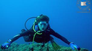 Scuba Diving-São Miguel-Discover Scuba Diving from Vila Franca do Campo, Sao Miguel Island-2