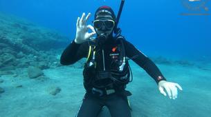 Scuba Diving-São Miguel-Discover Scuba Diving from Vila Franca do Campo, Sao Miguel Island-3