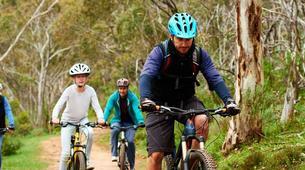 VTT-Aix-en-Provence-Visite guidée de la montagne Sainte-Victoire en vélo électrique, Aix en Provence-1