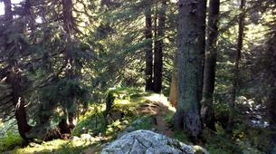 Senderismo-Sofia-Hiking in the Vitosha Mountains from Sofia-1