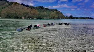 Sea Kayaking-Moorea-Clear kayak tour in Moorea-6