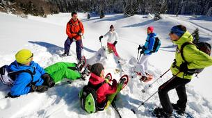 Raquette à Neige-Stockholm-Snowshoeing excursion in Stockholm-6