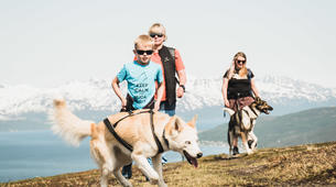 Randonnée / Trekking-Tromsø-Husky Hike with a visit to the Tromsø cable car-9