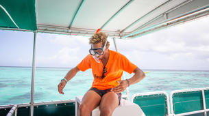Snorkeling-Le Gosier-Excursion Snorkeling au Gosier, Guadeloupe-5