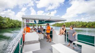 Snorkeling-Le Gosier-Excursion Snorkeling au Gosier, Guadeloupe-4